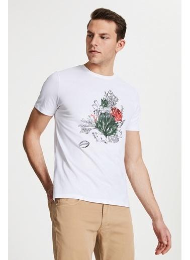 Damat Çizgili Baskılı T-Shirt Beyaz